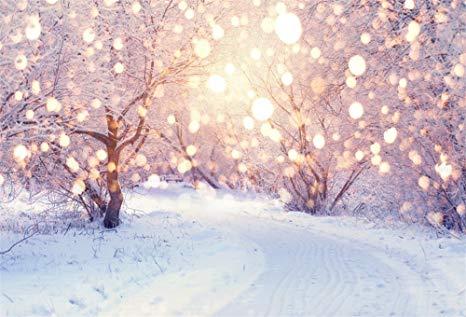 Zimski pejzaži-Winter landscapes - Page 24 711lrh10