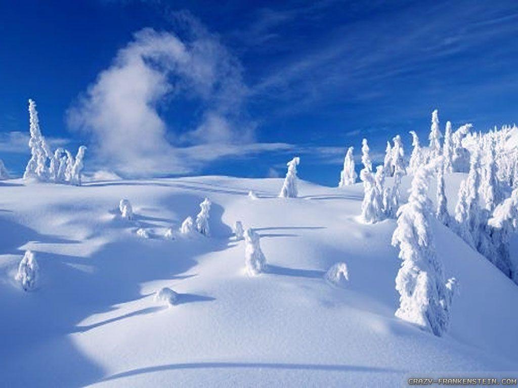 Zimski pejzaži-Winter landscapes - Page 13 8929-w14