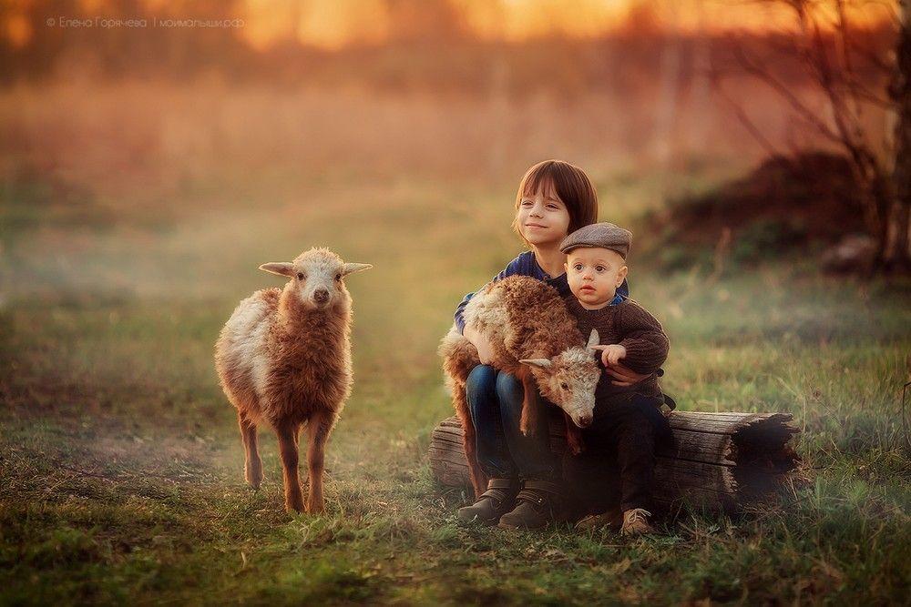 Deca i životinje - Page 19 A7389c10