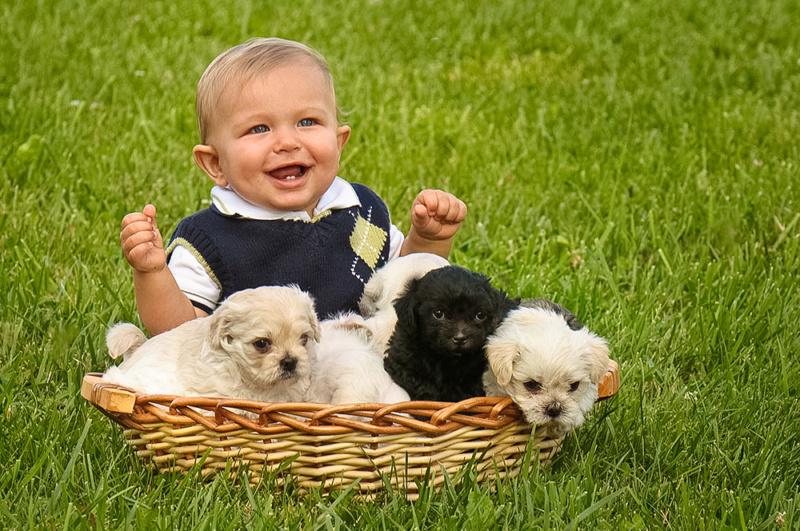 Deca i životinje - Page 20 Baby_p10