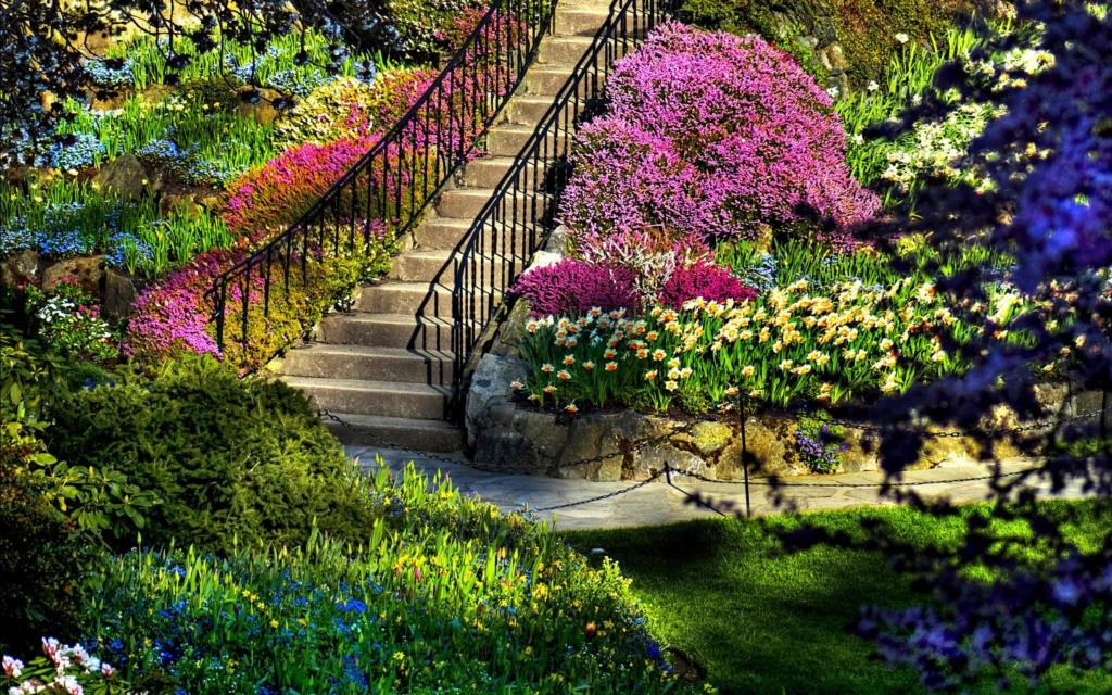 Parkovi i vrtovi - Page 35 Beauti17