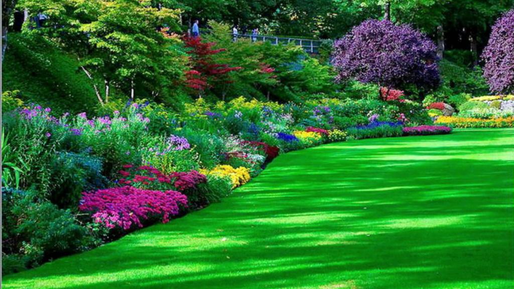 Parkovi i vrtovi - Page 35 Beauti18