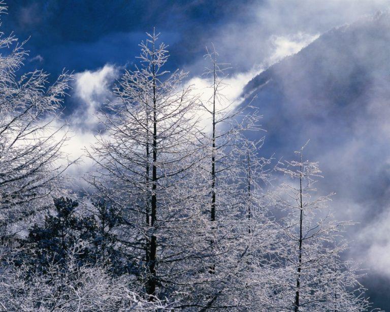 Zimski pejzaži-Winter landscapes - Page 21 Beauti50