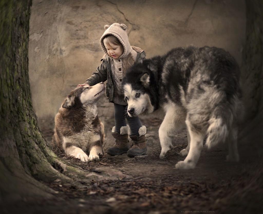 Deca i životinje - Page 19 C0249c10