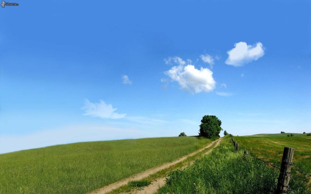 Putevi sreće - Page 38 Camino10