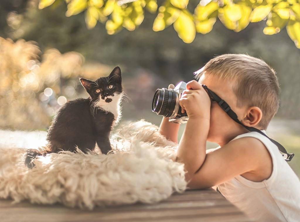 Deca i životinje - Page 21 Cats_k15