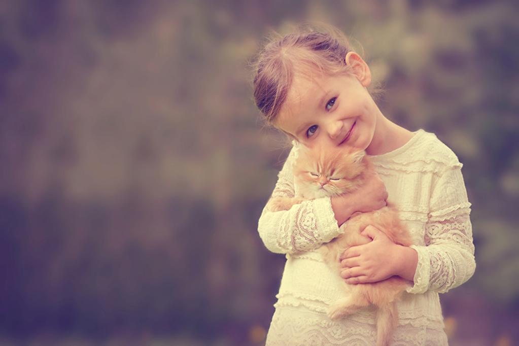 Deca i životinje - Page 21 Cats_l12