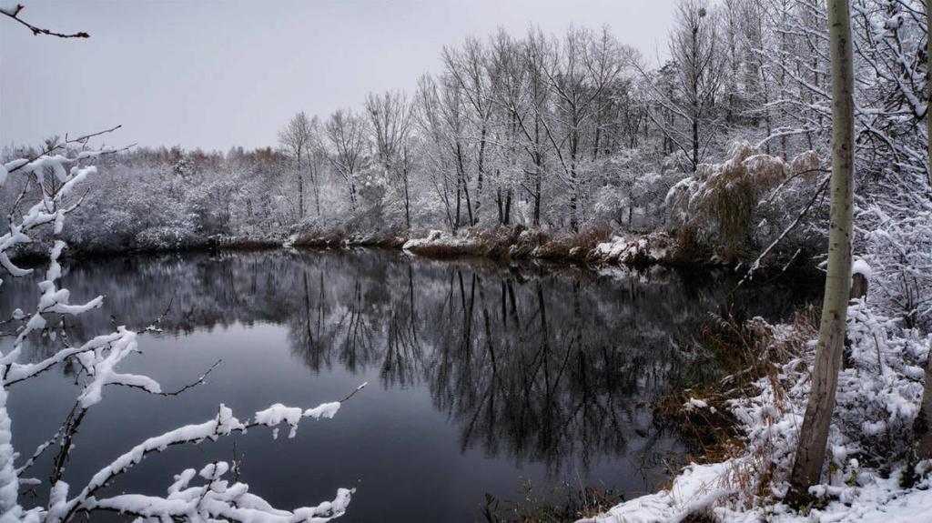 Zimski pejzaži-Winter landscapes - Page 13 Cold_r10