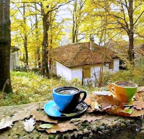 uz  kaficu,čaj... - Page 28 Cwewjx10
