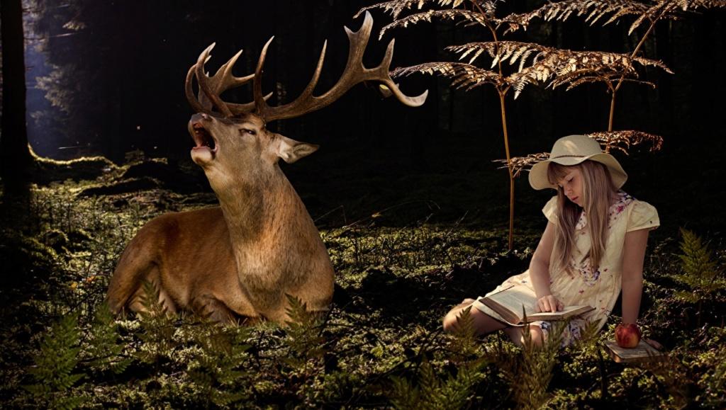 Deca i životinje - Page 21 Deer_l10