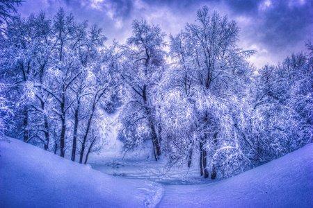 Zimski pejzaži-Winter landscapes Deposi63