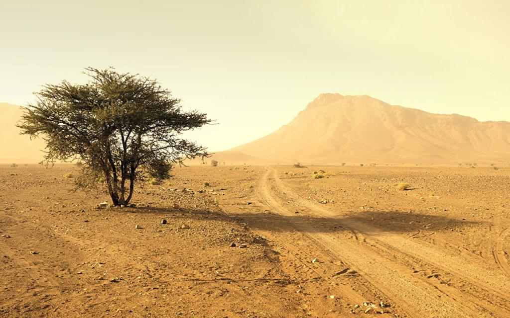 Pustinje - Page 36 Desert10
