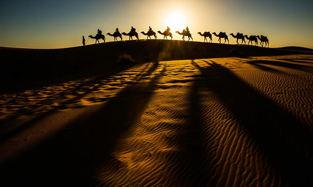 Pustinje - Page 37 Desert11