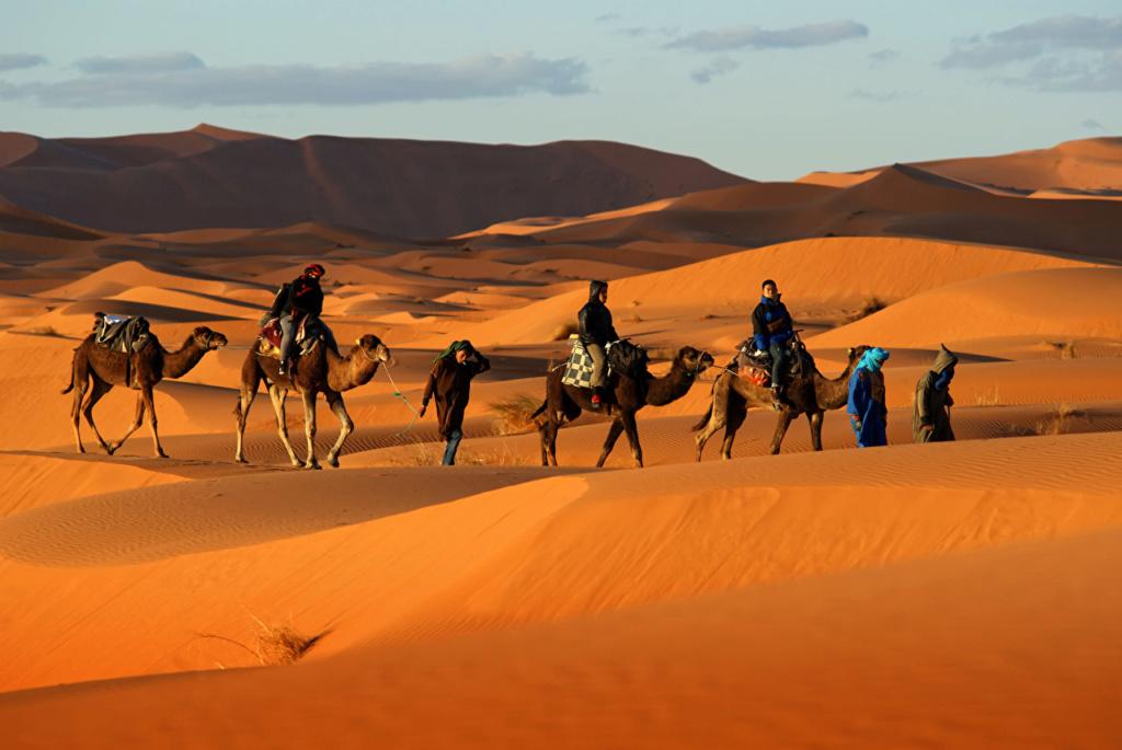 Pustinje - Page 36 Desert13