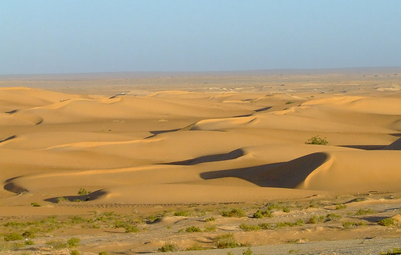 Pustinje - Page 38 Desert19
