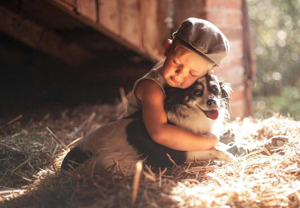 Deca i životinje - Page 21 Dogs_h12