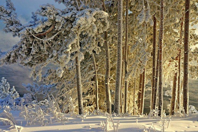 Zimski pejzaži-Winter landscapes - Page 16 Dpfkby10