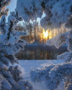 Zimski pejzaži-Winter landscapes E5125210