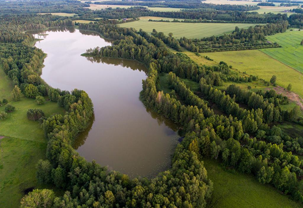 More,jezero,reka...plaža,palma... - Page 32 Estoni10