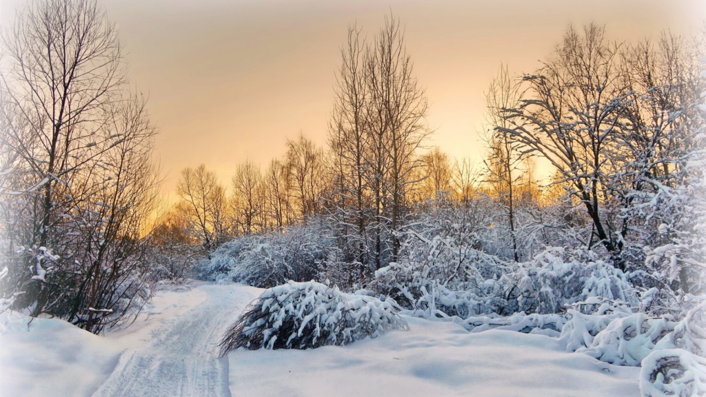 Zimski pejzaži-Winter landscapes - Page 4 Evenin15