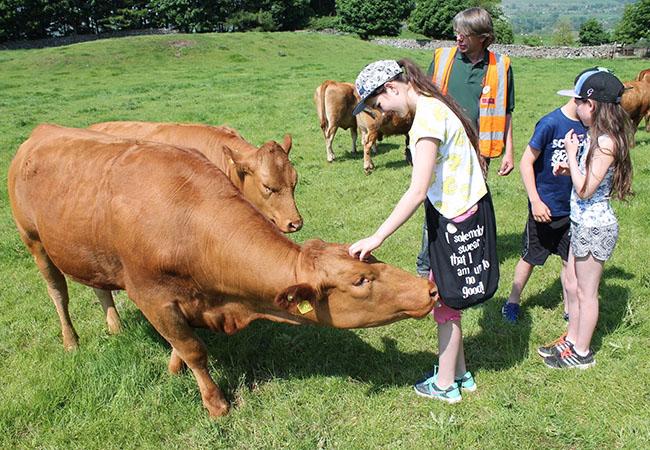Ljudi i životinje - Page 17 Farm-t10