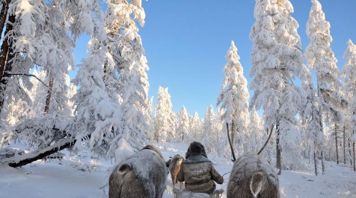 Zimski pejzaži-Winter landscapes - Page 16 Galler16