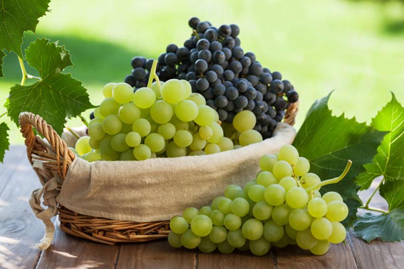 Voće - Page 6 Grapes11