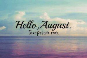 hello avgust Hello-16