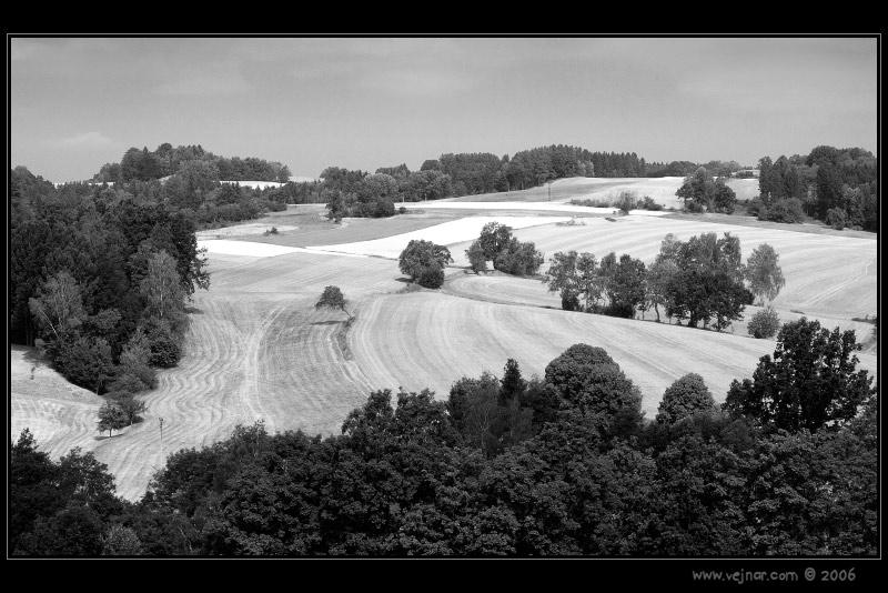 priroda u crno beloj boji - Page 24 Krajin10