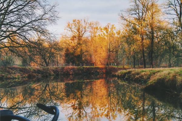 Zokijev blog izlog - Page 38 Lake-n10