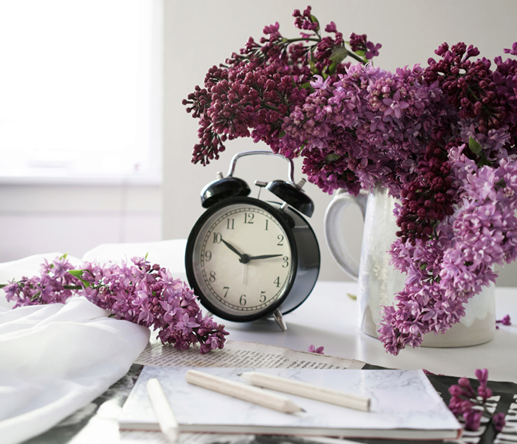 Tacno vreme-SAT - Page 39 Lilac_12