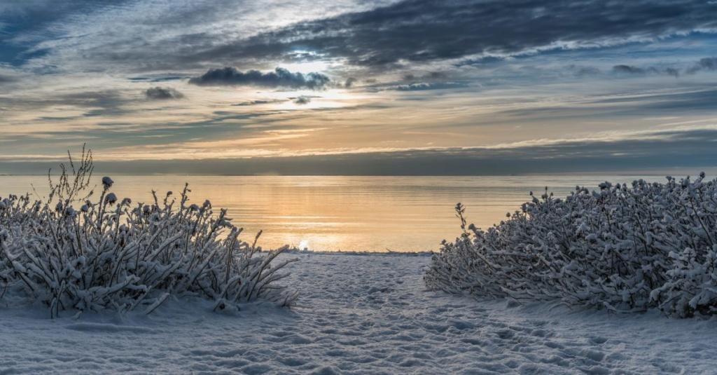 Zimski pejzaži-Winter landscapes - Page 5 Long-i10