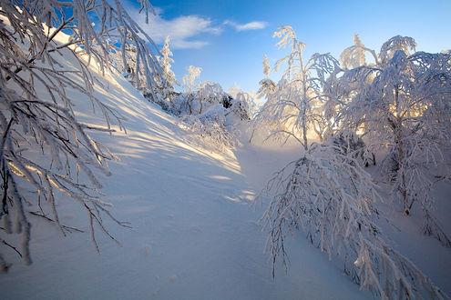 Zimski pejzaži-Winter landscapes - Page 3 Mid_1516
