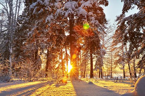 Zimski pejzaži-Winter landscapes - Page 3 Mid_1517