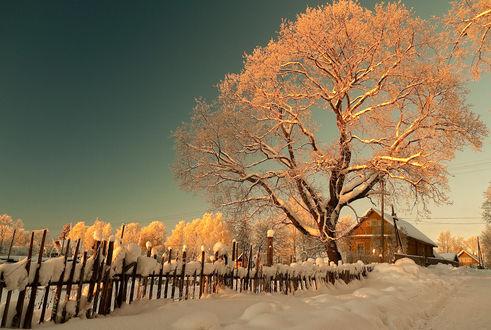 Zimski pejzaži-Winter landscapes - Page 3 Mid_1518
