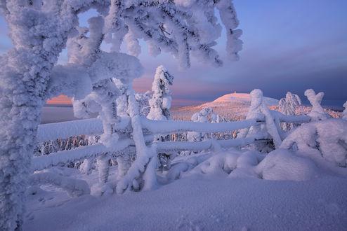 Zimski pejzaži-Winter landscapes - Page 3 Mid_2514