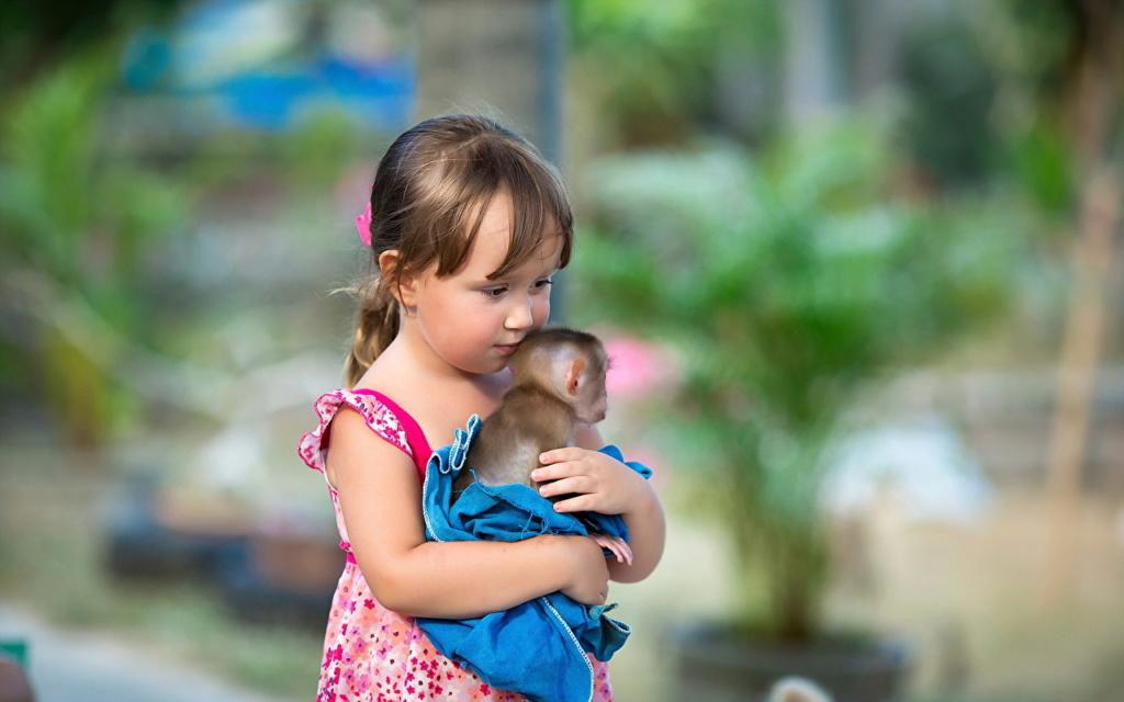 Deca i životinje - Page 21 Monkey20