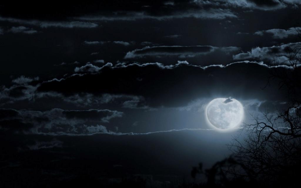 Mesečina - Page 41 Moon-w16