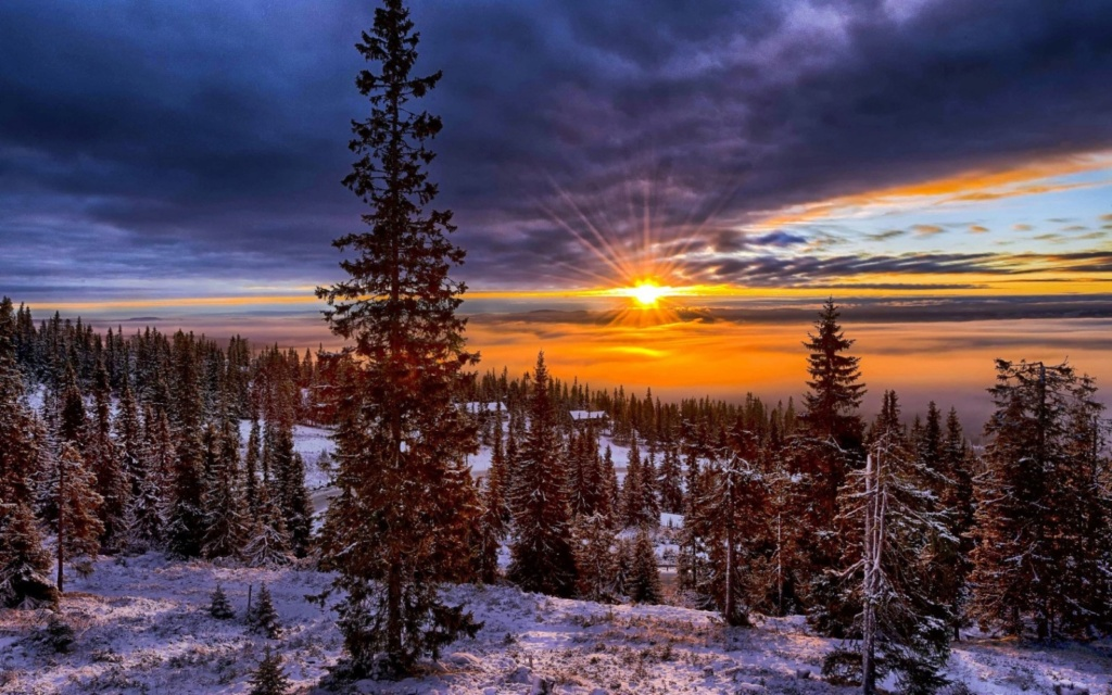 Zimski pejzaži-Winter landscapes - Page 22 Norway66