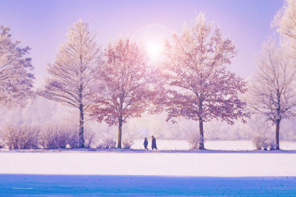 Zimski pejzaži-Winter landscapes - Page 16 Pexels11
