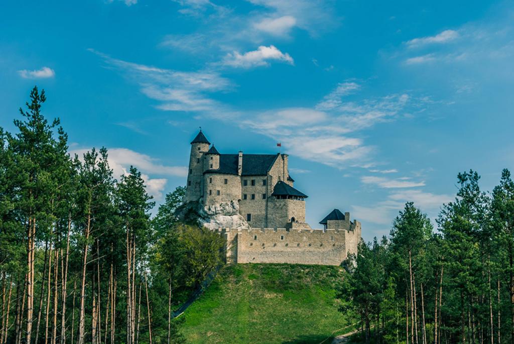 Dvorci,tvrđave i zamkovi - Page 39 Poland14