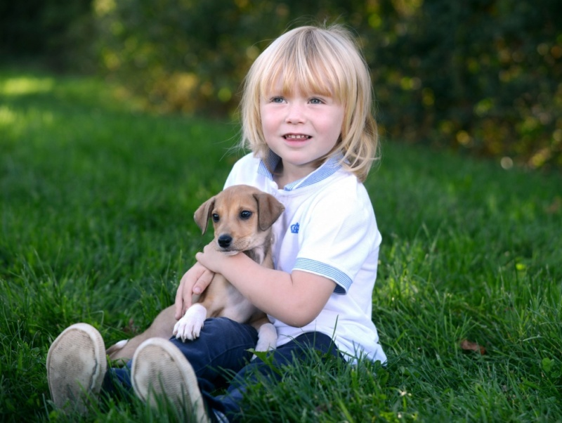 Deca i životinje - Page 20 Puppy210