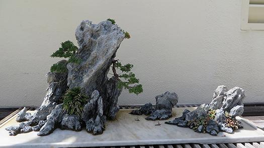 Bonsai - Page 34 Rock_p10