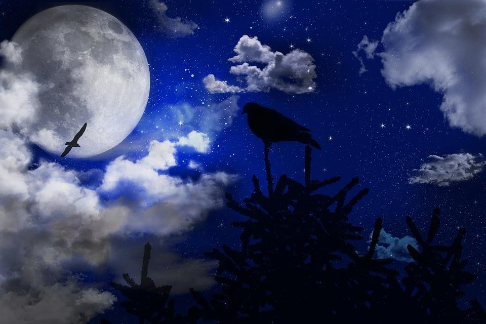 Mesečina - Page 39 Sky-7010