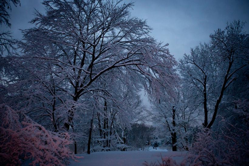 Zimski pejzaži-Winter landscapes - Page 6 Snow11