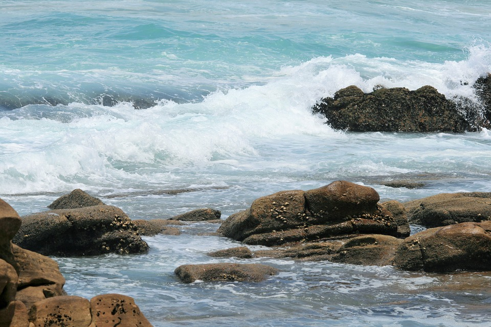 Talasi - Page 2 Surf-o10