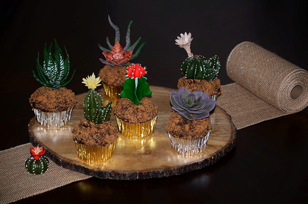 Kaktusi - Page 35 Sweets10