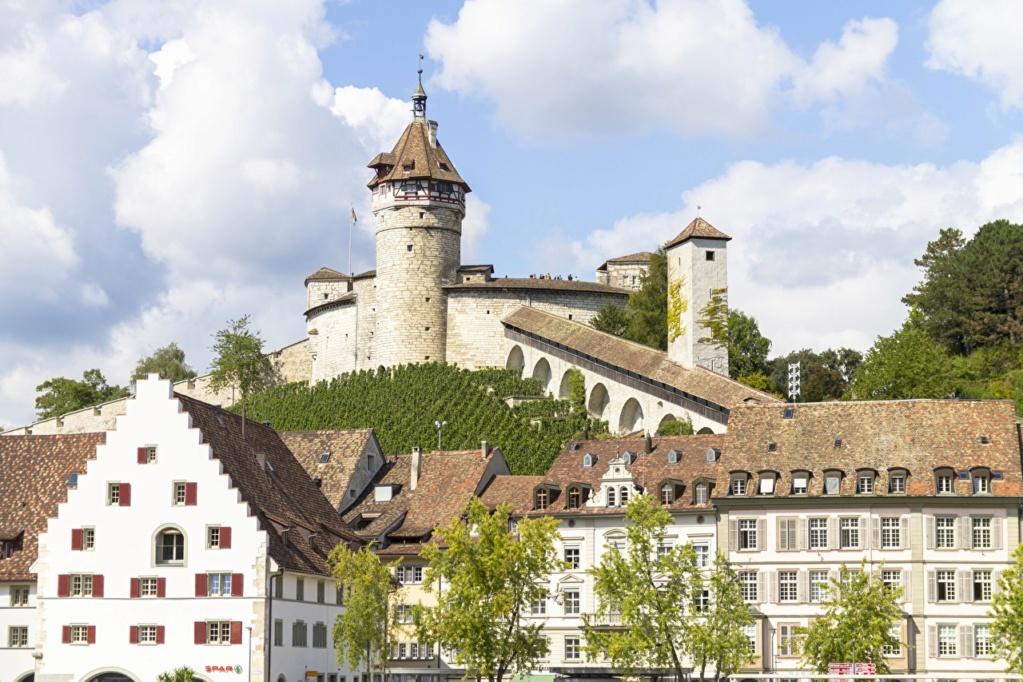 Dvorci,tvrđave i zamkovi - Page 41 Switze42