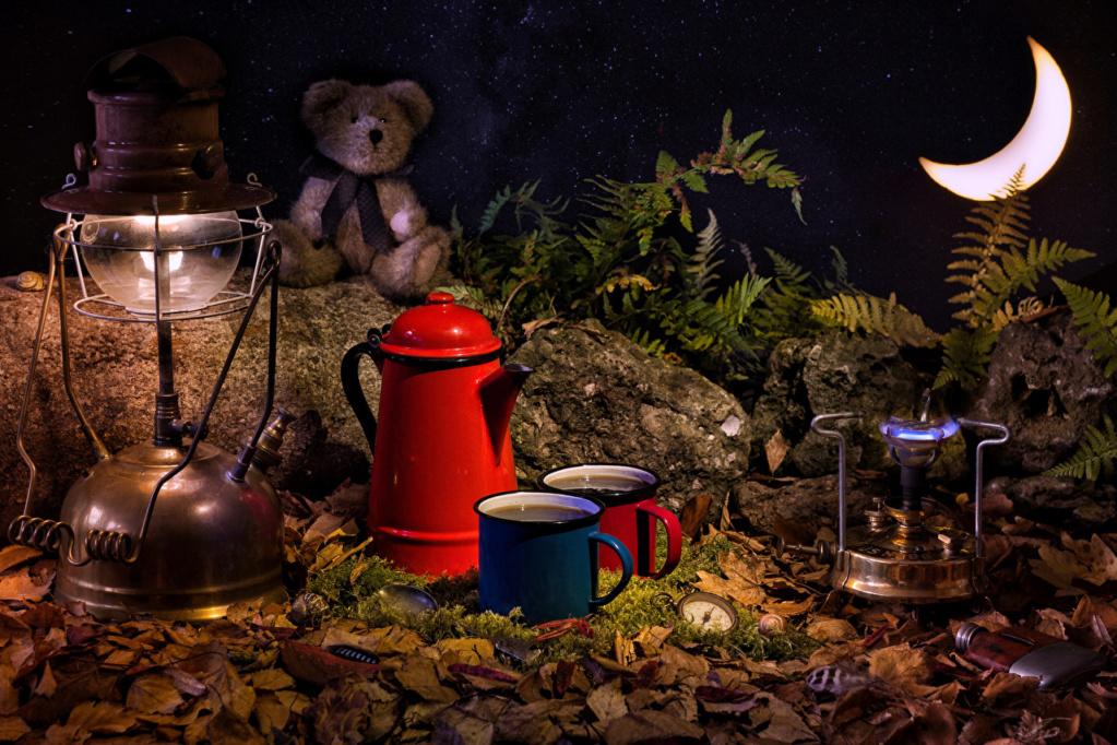 uz  kaficu,čaj... - Page 28 Teddy_13