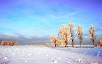 Zimski pejzaži-Winter landscapes - Page 21 Thumb-87